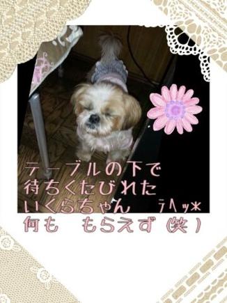 fc2blog_20140322213312dc1.jpg