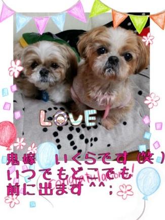 fc2blog_20140322214519914.jpg