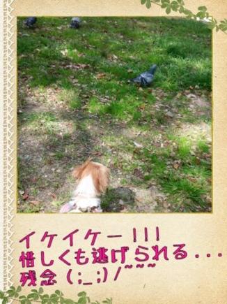 fc2blog_201403222208198c0.jpg