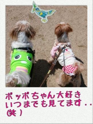 fc2blog_20140322220856da2.jpg