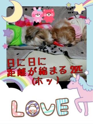 fc2blog_2014032222132786d.jpg