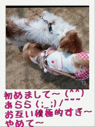 fc2blog_20140322221430c10.jpg
