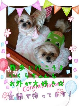 fc2blog_2014032321414701b.jpg