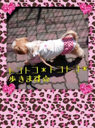 fc2blog_201403232143080a7.jpg