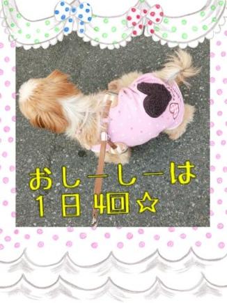fc2blog_20140324231928689.jpg