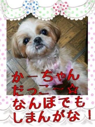 fc2blog_2014032423194741f.jpg