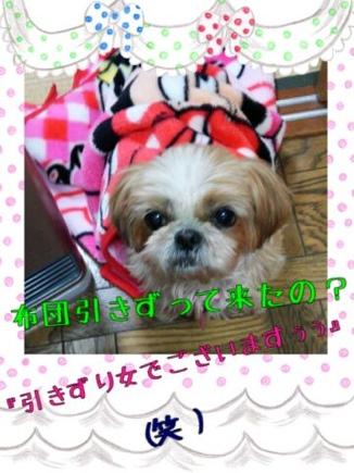 fc2blog_201403252045414b7.jpg