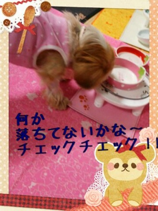 fc2blog_20140325204738825.jpg