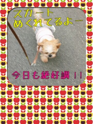 fc2blog_2014032520513701d.jpg