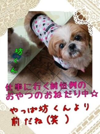 fc2blog_20140326202910e74.jpg