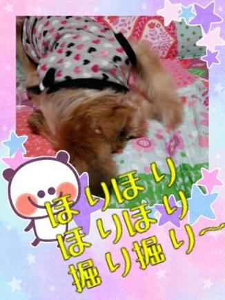 fc2blog_20140327201512499.jpg