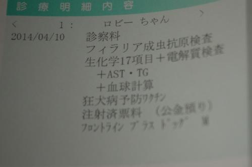 P1260733.jpg