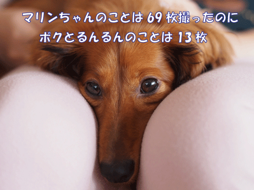 140729-01.jpg