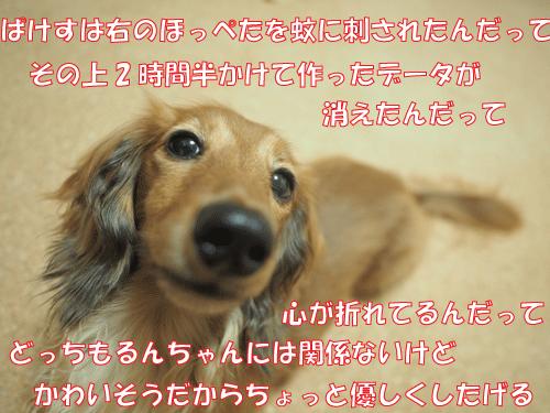 140831-01.jpg