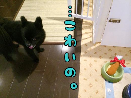syoujikikowai.jpg