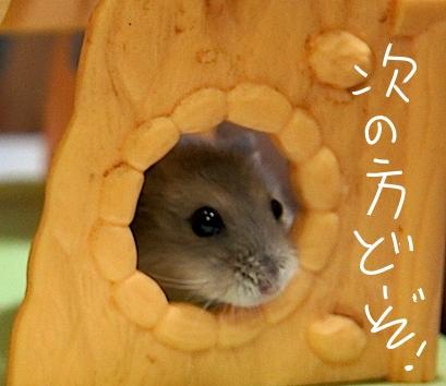 fc2stuginokata.jpg