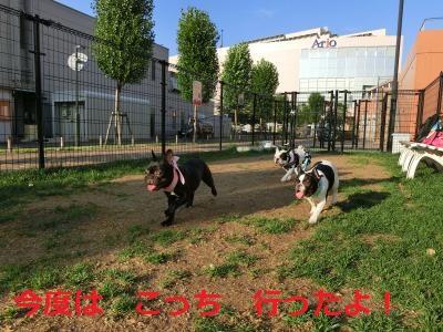 028_convert_20140718191252.jpg