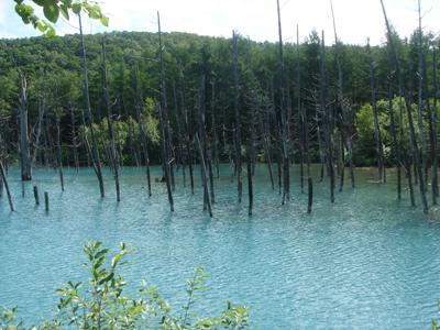 北海道_青い池
