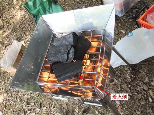 charcoalfire.jpg