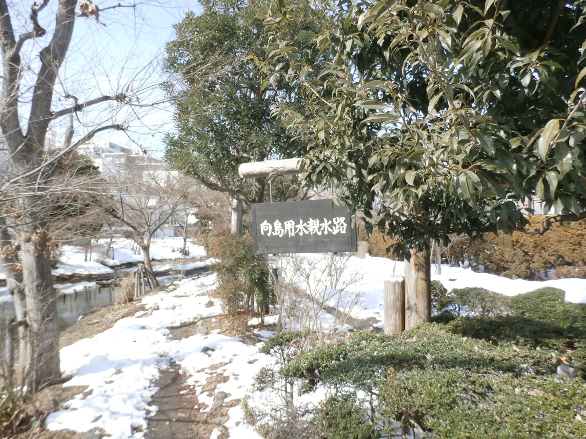 P2180591.jpg