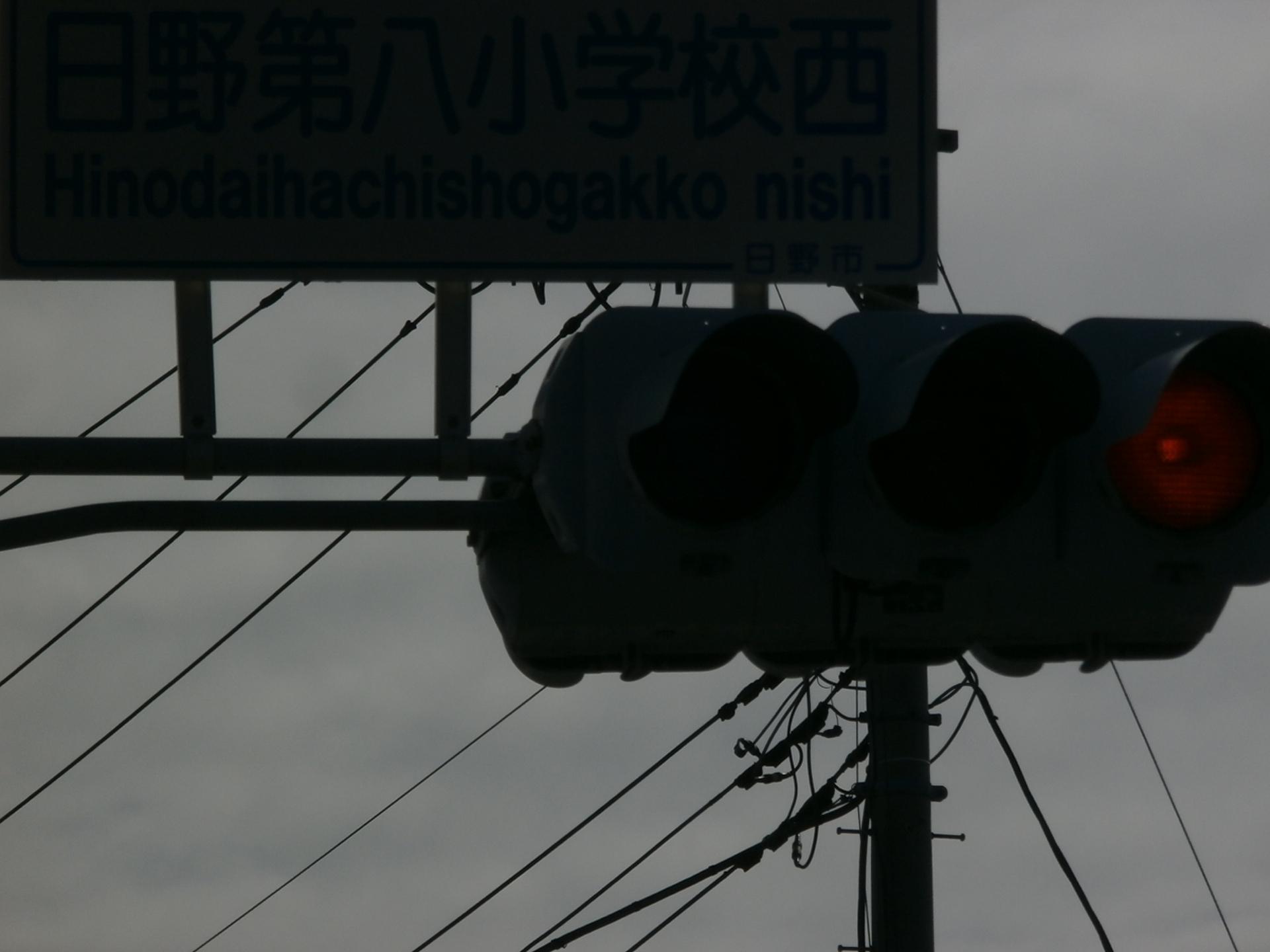 P2180598.jpg