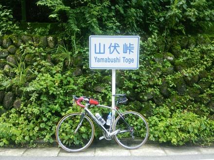 20140726_yamabusi.jpg