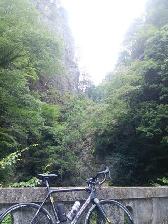 20140808_kanoto.jpg