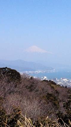 fuji-yasu.jpg