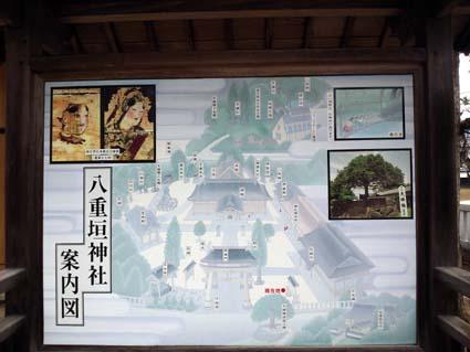 yaegaki2.jpg